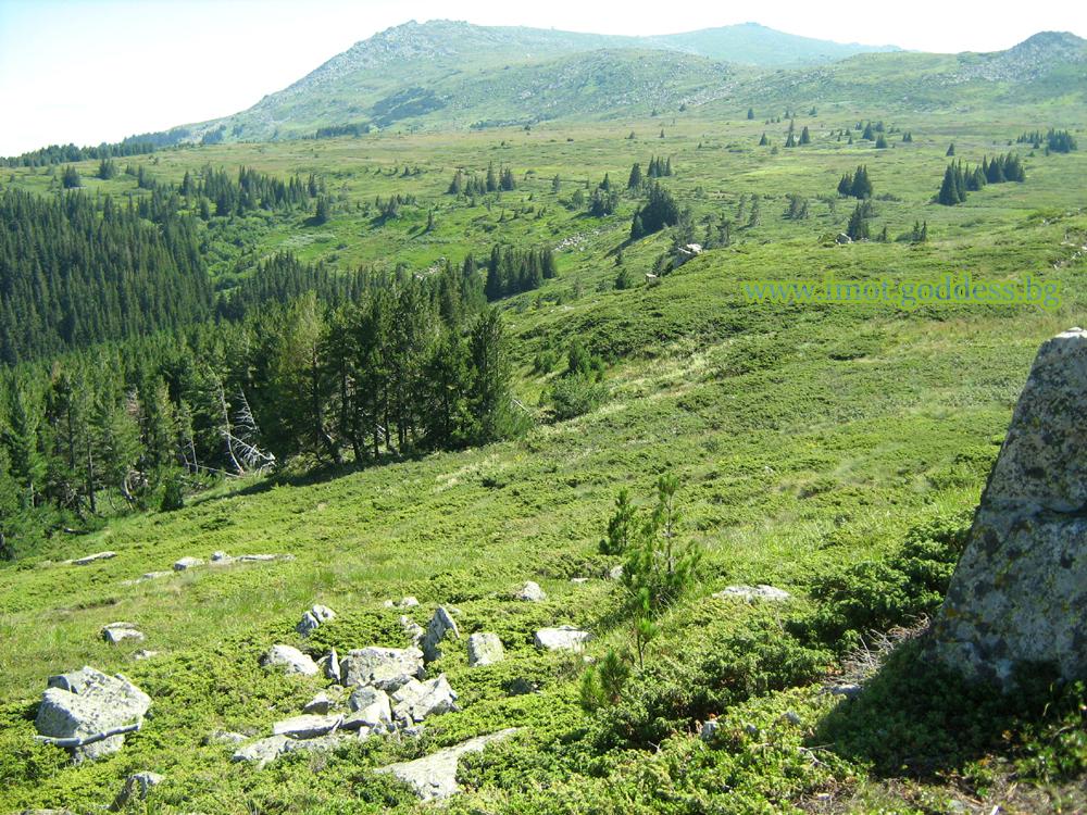 Витоша - планината