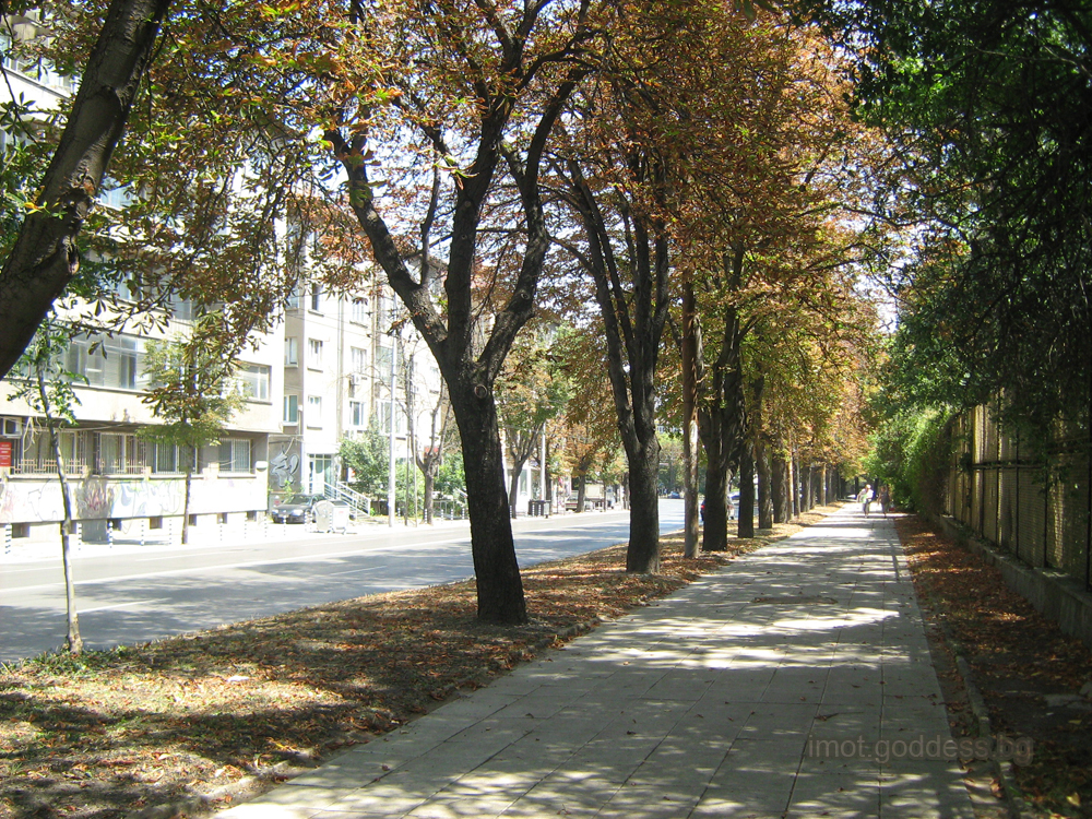 Пред Александровска болница - ул. Св.Георги Софийски